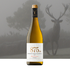 875m-chardonnay-teaser